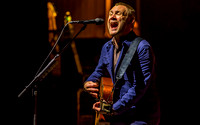 David Gray - 6/22/2015 Meadowbrook Music Festival